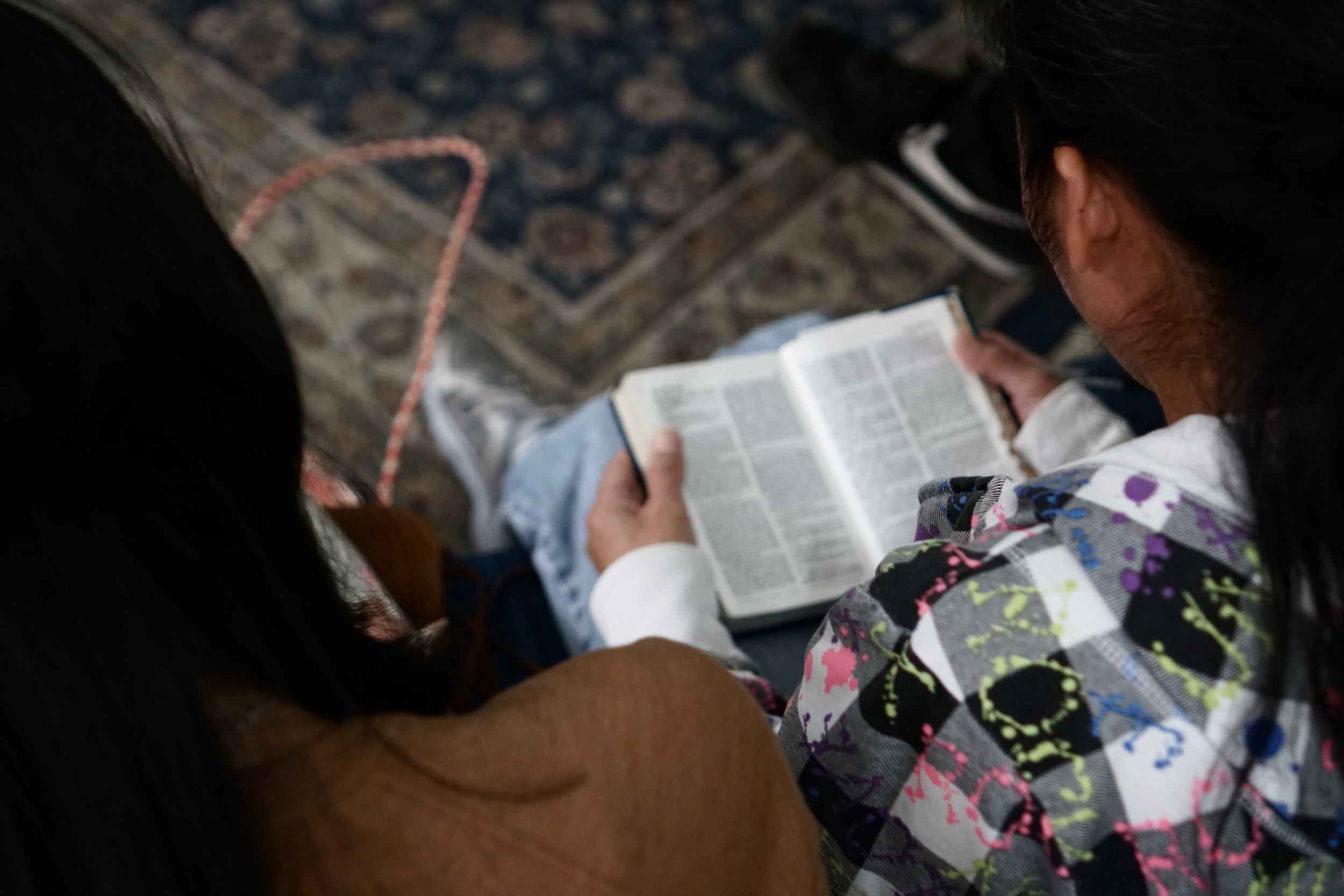 Studies & small groupS -