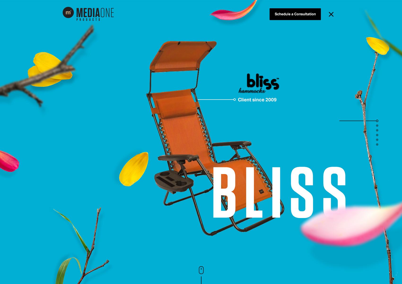 m1p-bliss-1.jpg