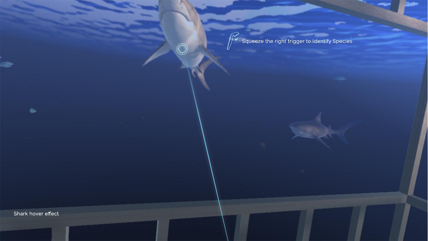 shark-hover.jpg