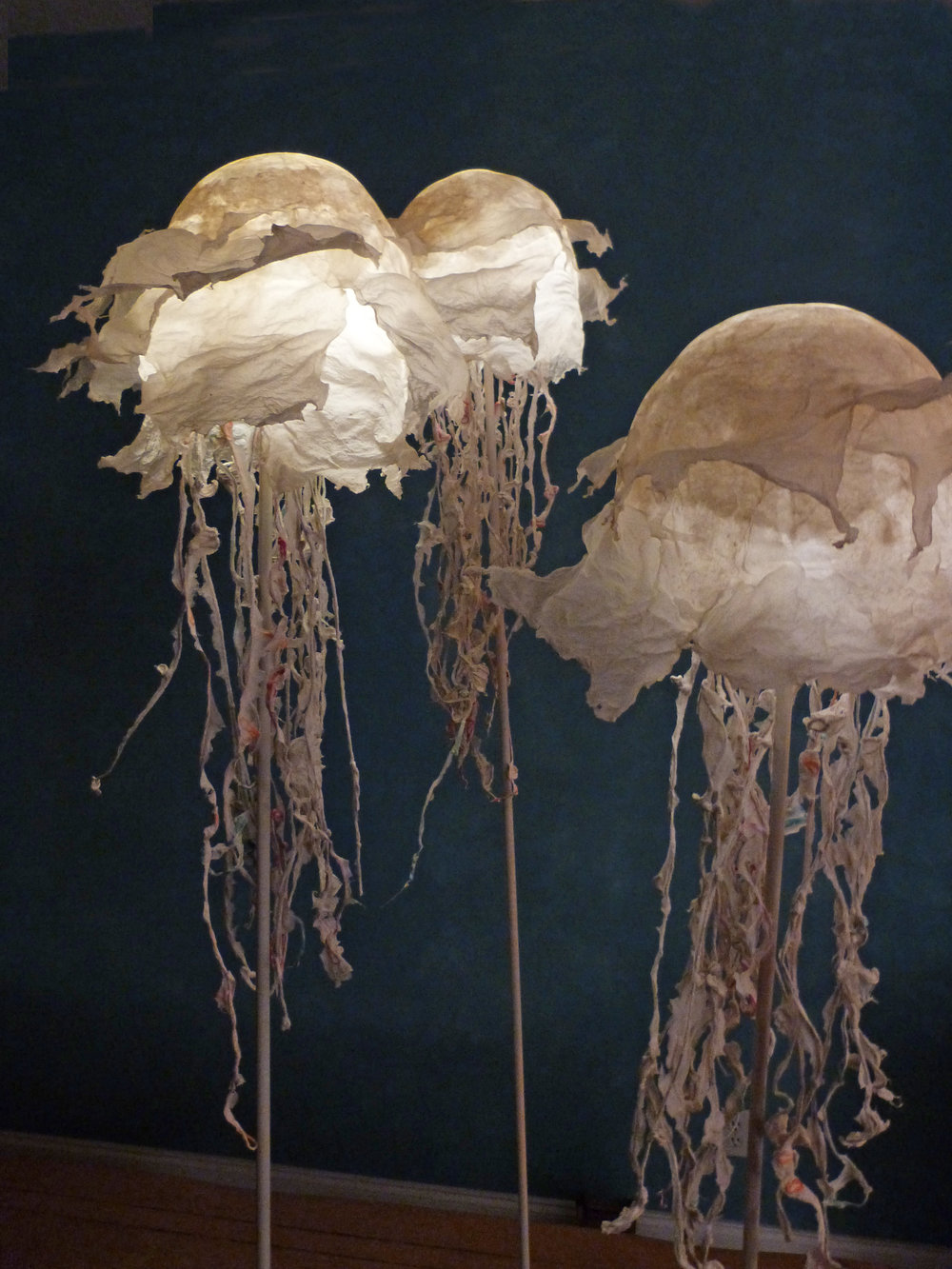 JELLIES+LARGE+P1020747.jpg