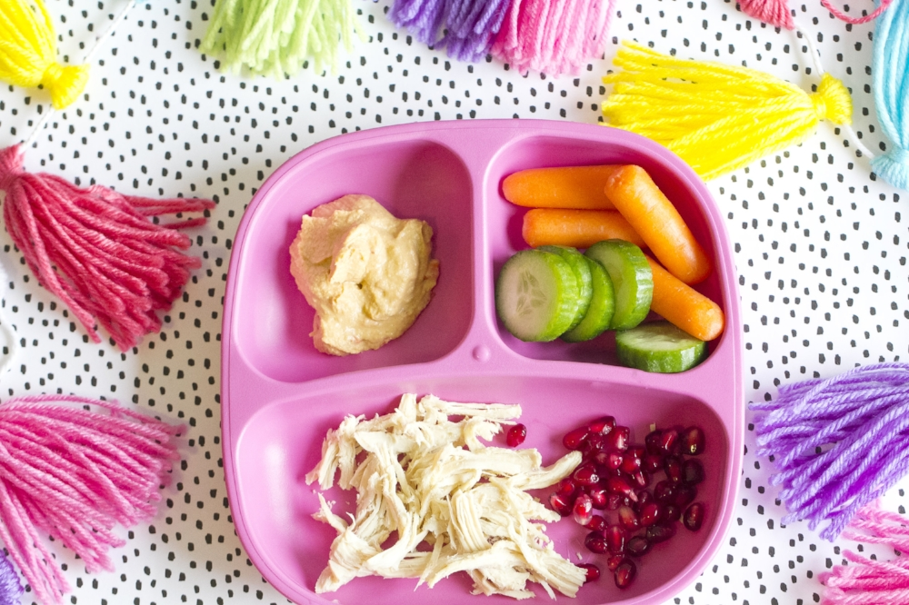 Healthy Kids Meal Ideas- Shredded Chicken, Pomegranate, Veggies With Hummus