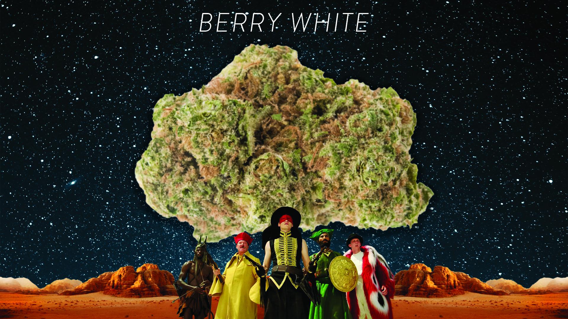 Headlight-Cannabis-Berry-White-Far-Out-Films.jpg