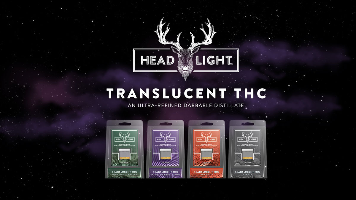 headlight-translucent-thc-distillates.jpg