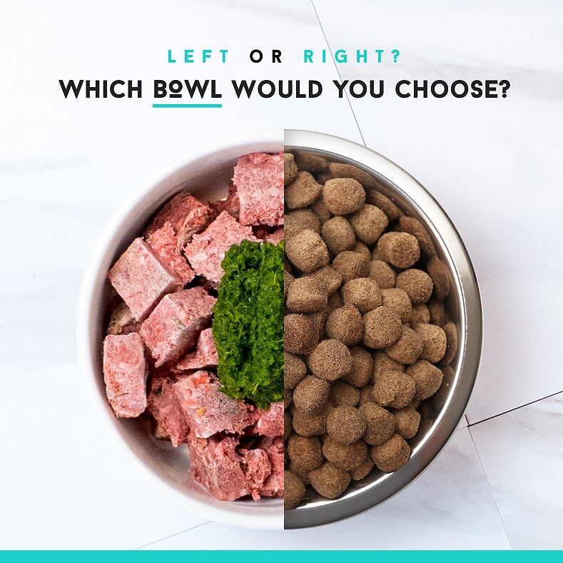 Which Bowl Would You Choose.png