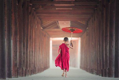 umbrella-1807513__340.jpg