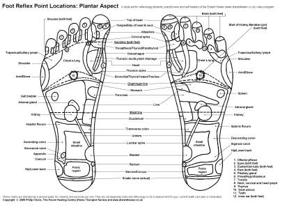 Foot_Chart_Plantar_BWsml.jpg