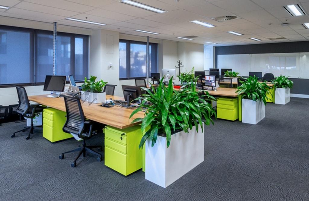 OOYALA Open plan working environment.jpg