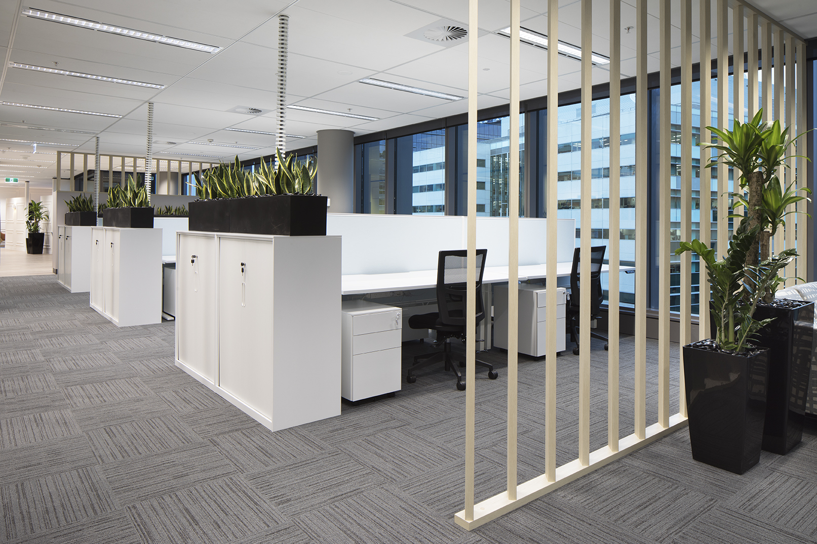 Clean, crisp office fitouts, with planter boxes used to enhance privacy.