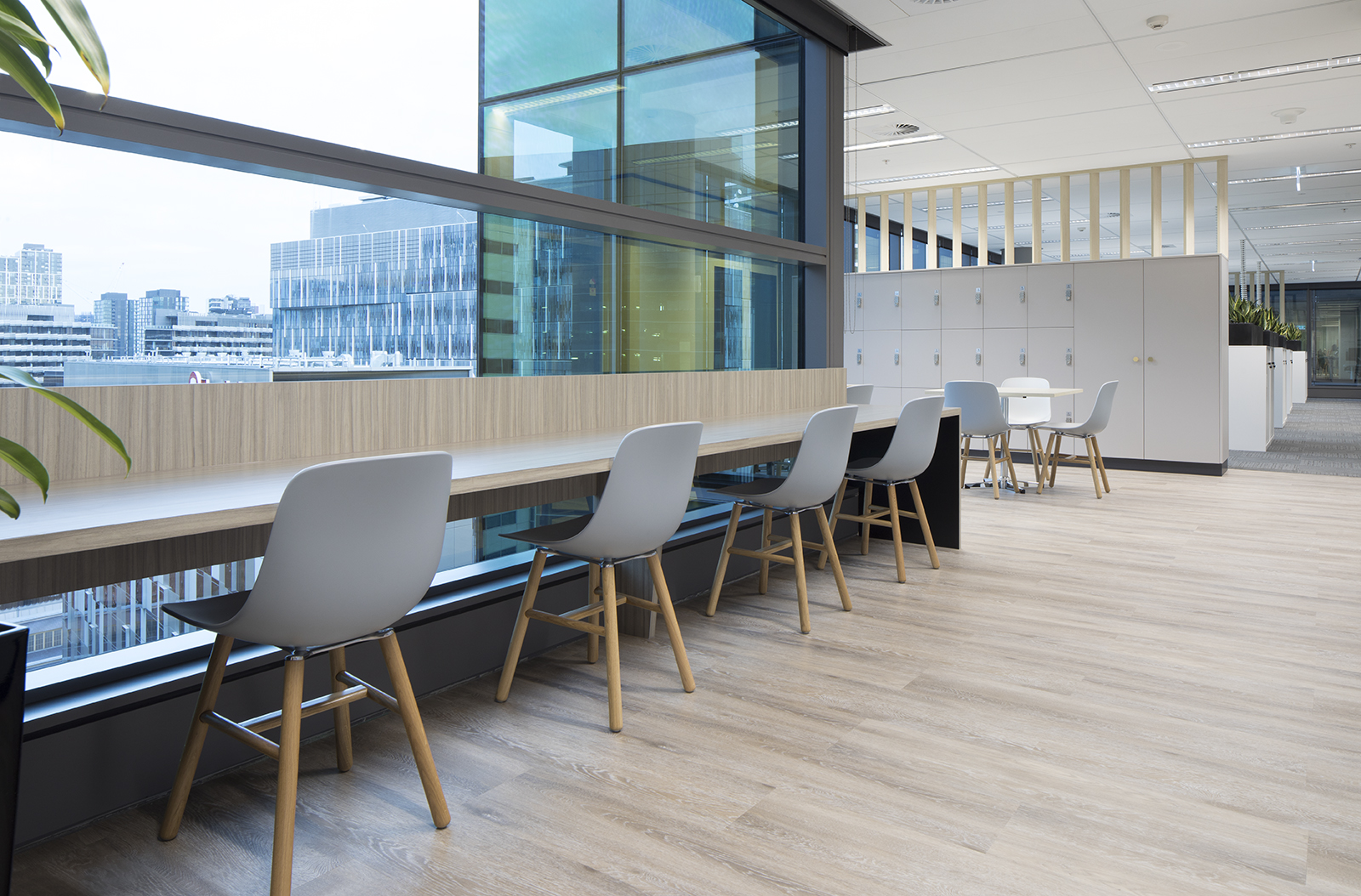 Workplace and office fit out by Tall Architects
