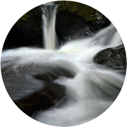 Freshwater Enhancement -