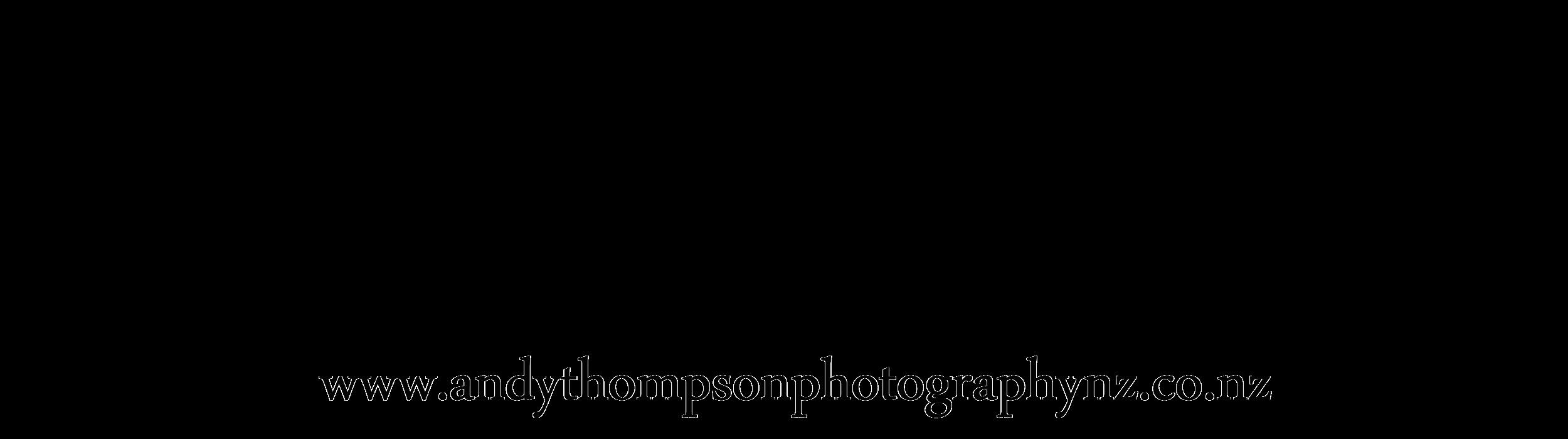 Andy-Thompson logo-black.png