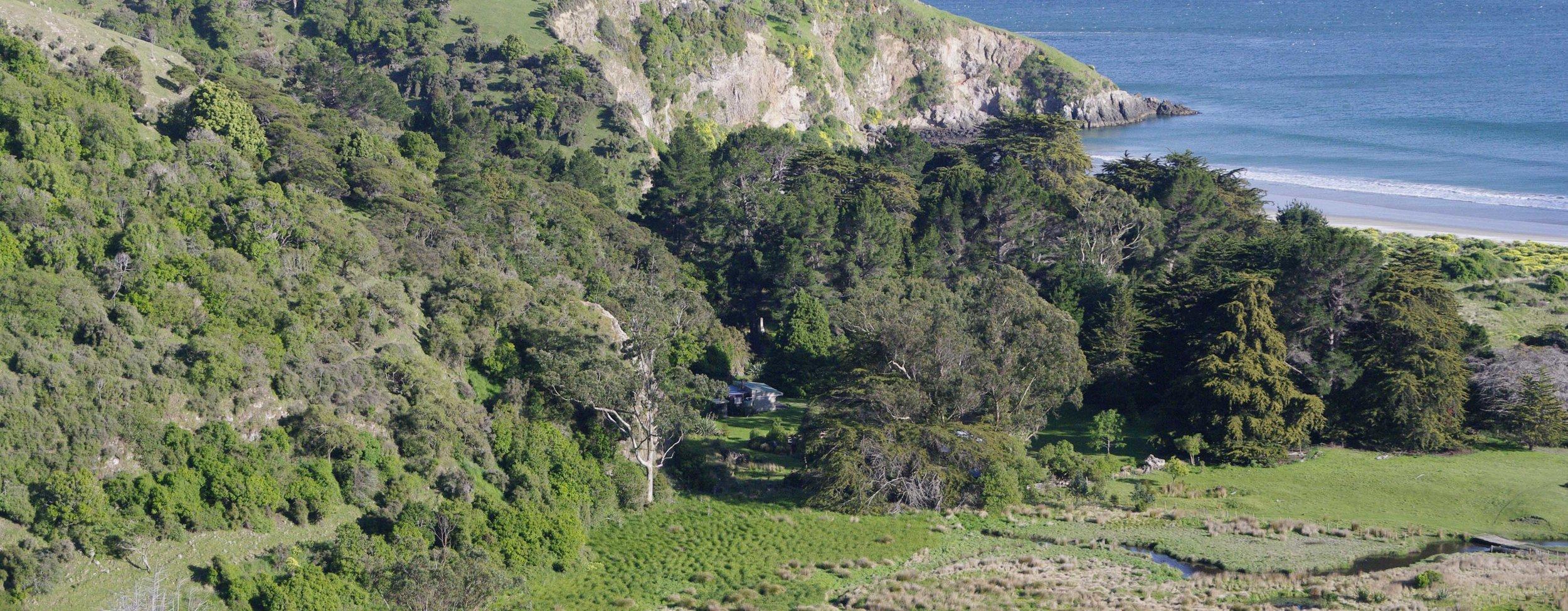 whareakeake wetland small.jpg