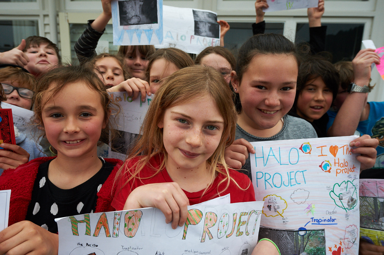 Room 4 at Port Chalmers School with their Halo Project posters