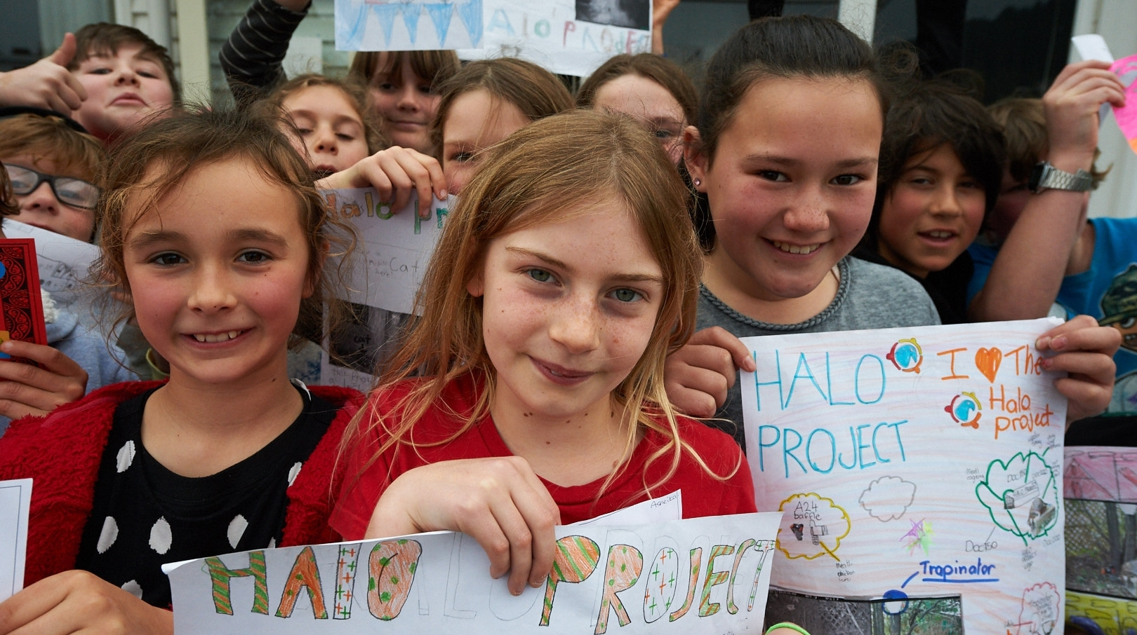 Room 4 kids at Port Chalmers School with their Halo Project posters