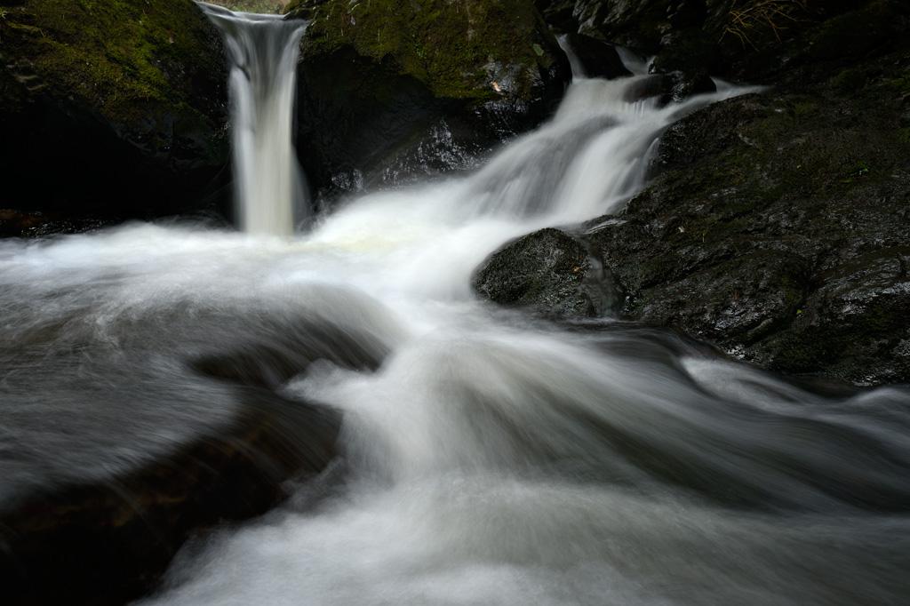 Leith Stream by Craig McKenzie