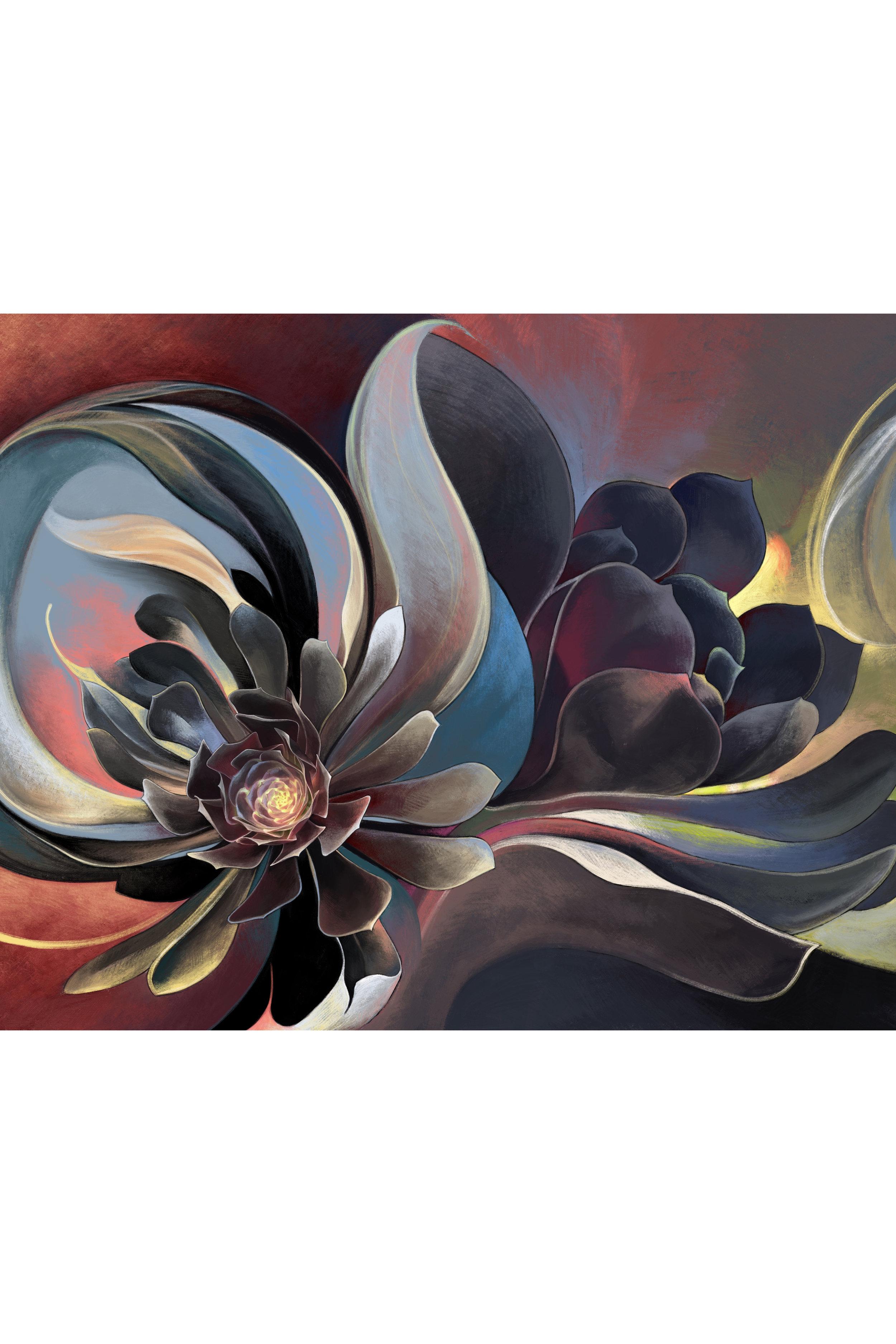 Black Succulent 1