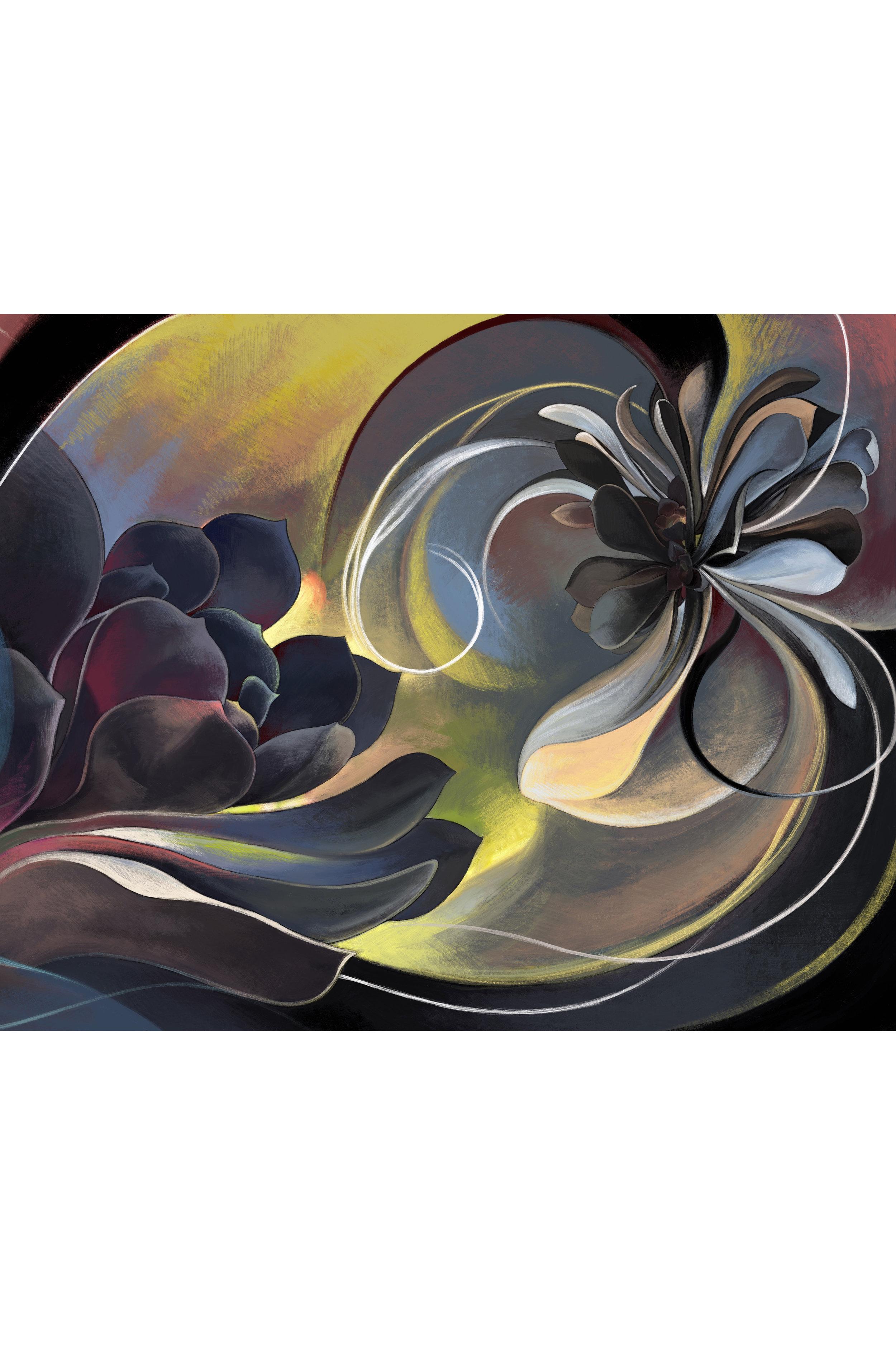 Black Succulent 3