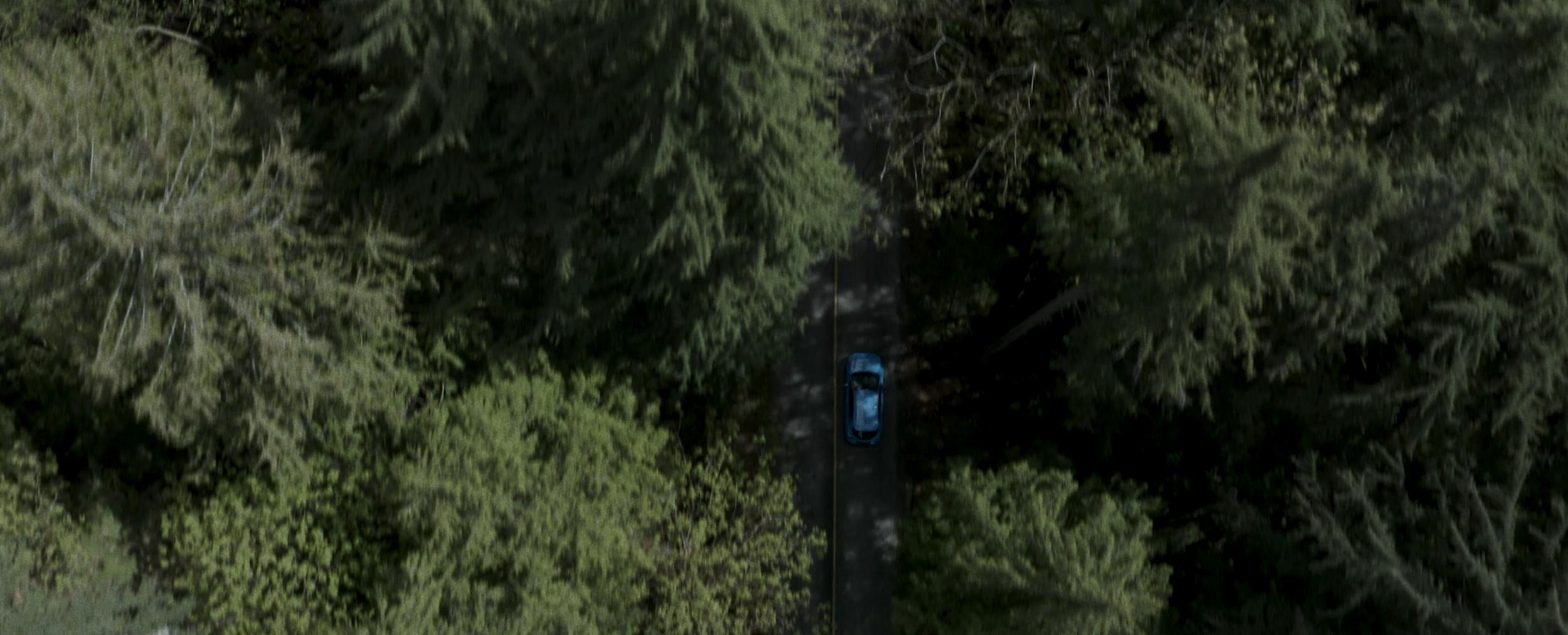 Screen Shot 2019-05-17 at 9.45.28 AM.png