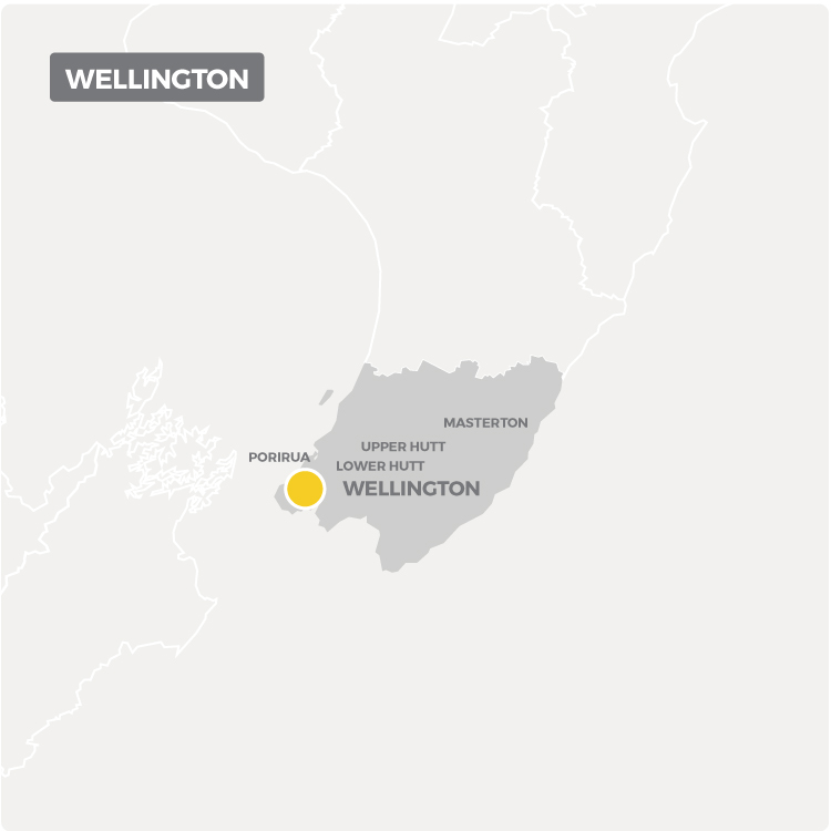 Chemcare offers decontamination services in Wellington as shown on this map