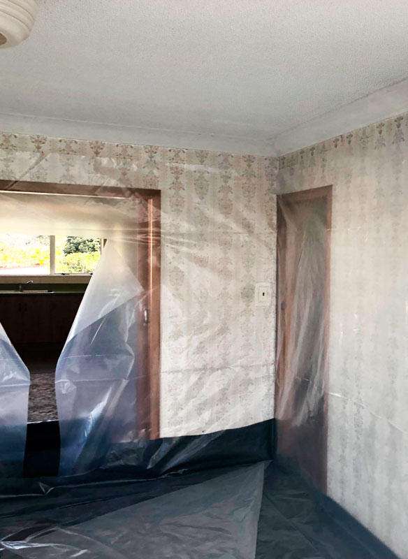 Ceiling-removal.jpg
