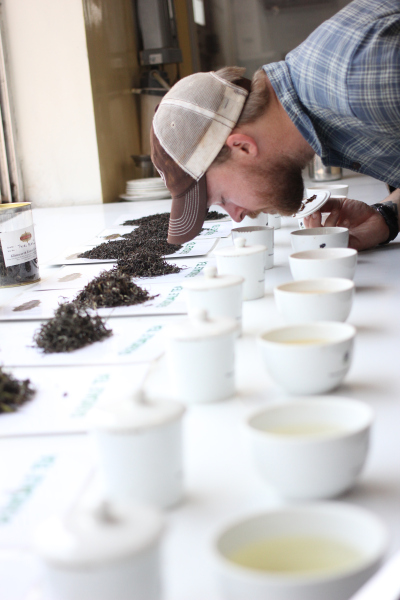 Tea tasting (Specialty tea) at Glendale tea estate in Nilgiri (South India)