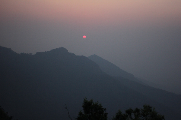 Sunrise at Glendale Tea Estate