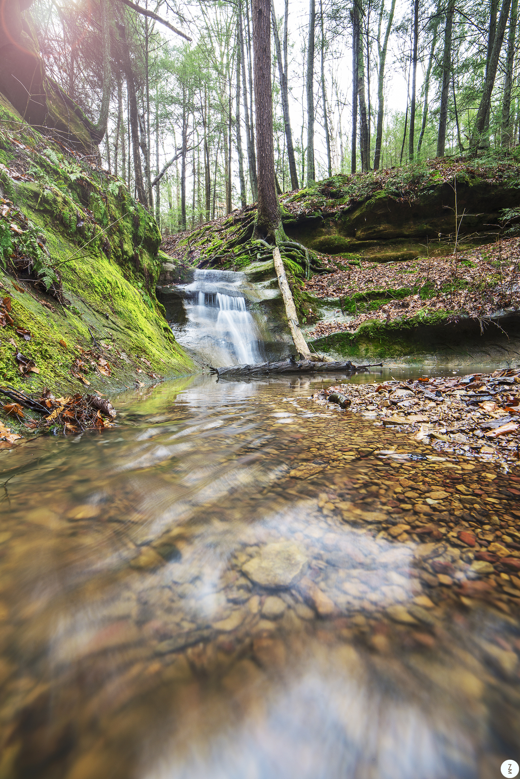 Water Fall  2017