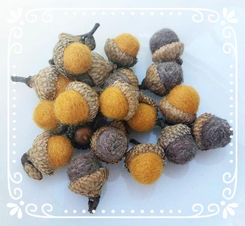 fall acorns.jpg
