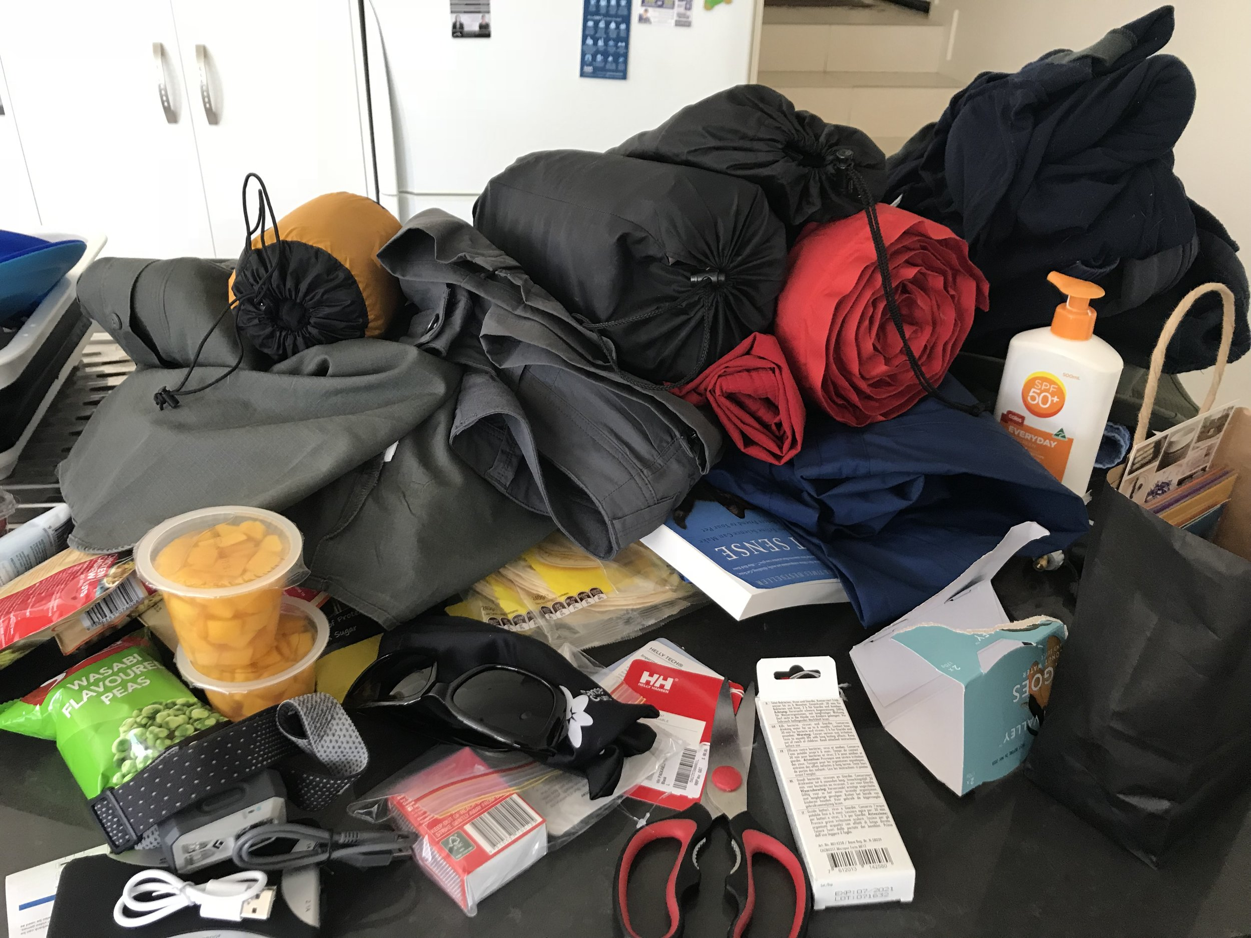 Travel packing - sort and weigh