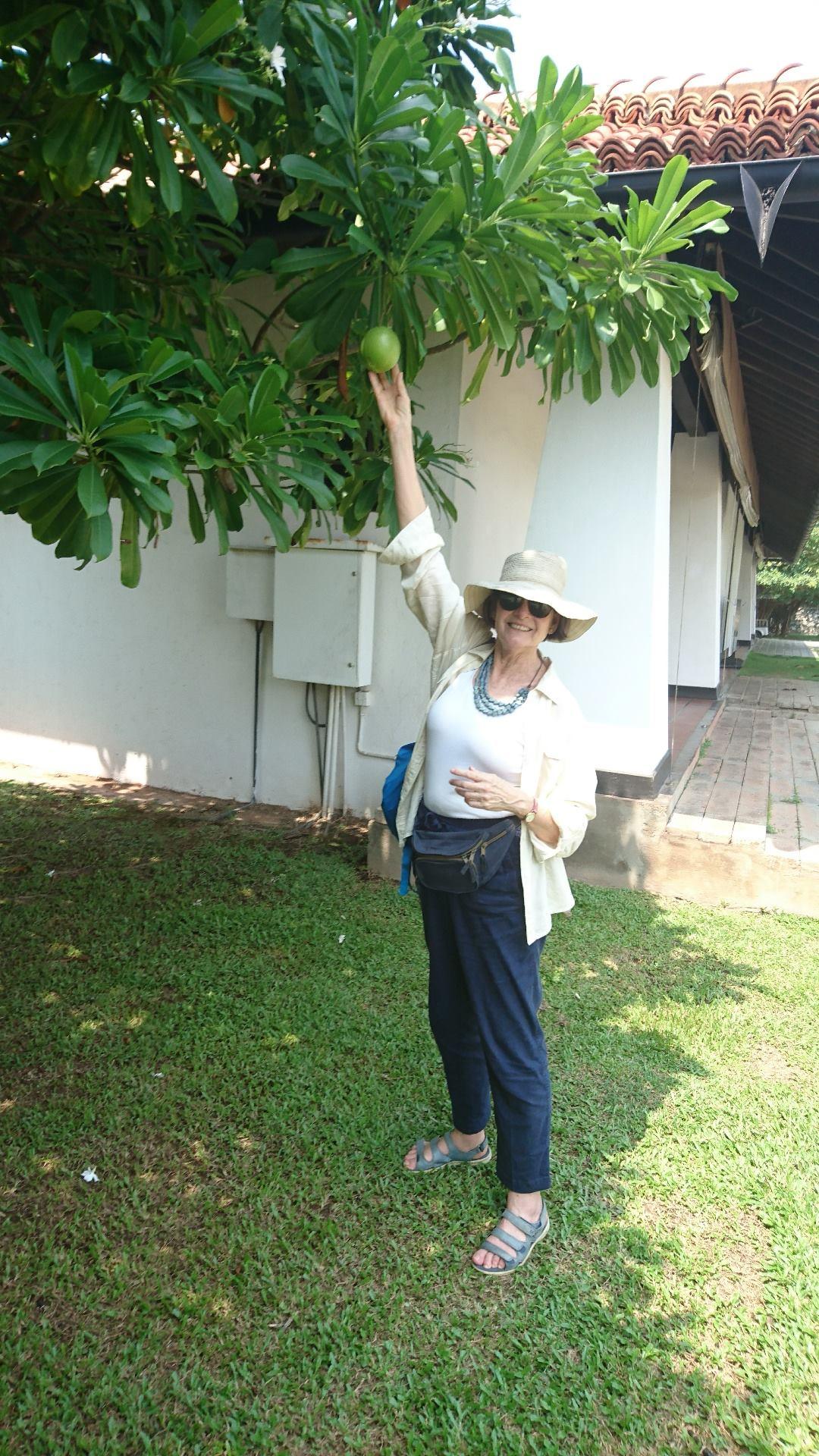 Susan Lever in Sri Lanka