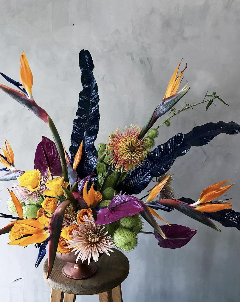 Pieza de Allium Estudio Floral