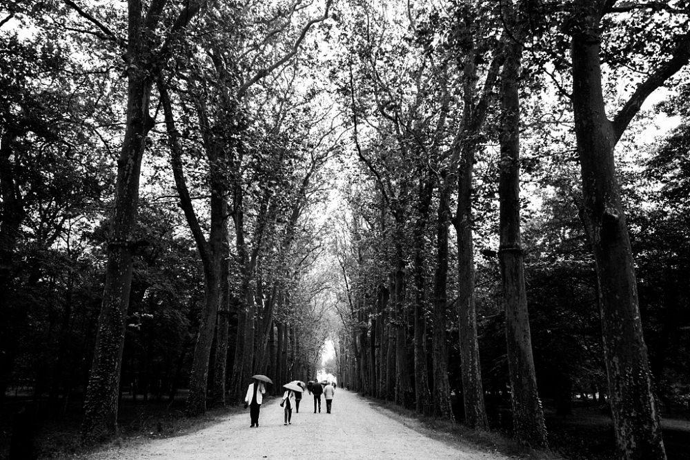 20160612 10-49-21 - Tours, Loire Valley.jpg
