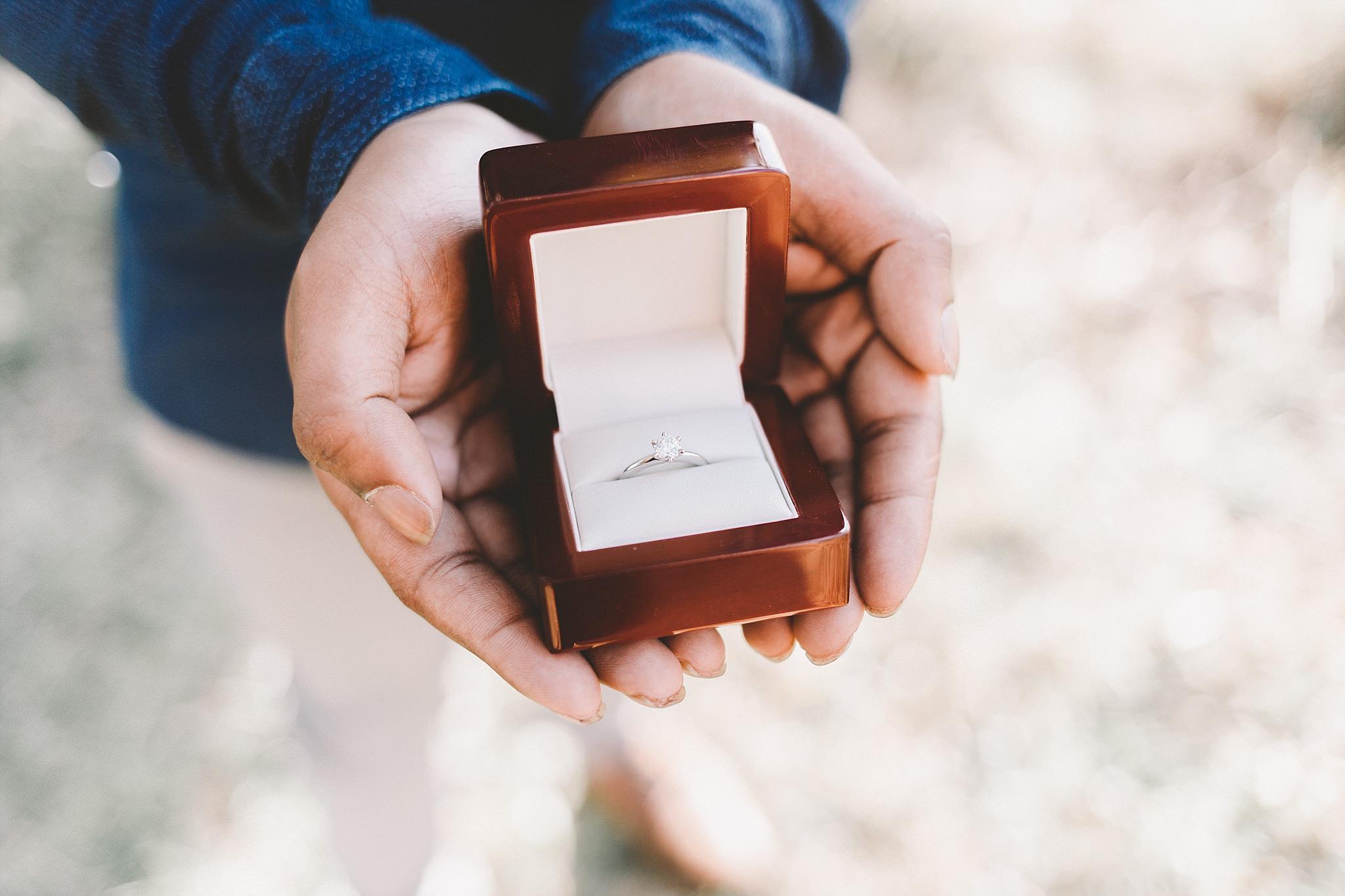 Dandenong Engagement Wedding Photographer-1.jpg