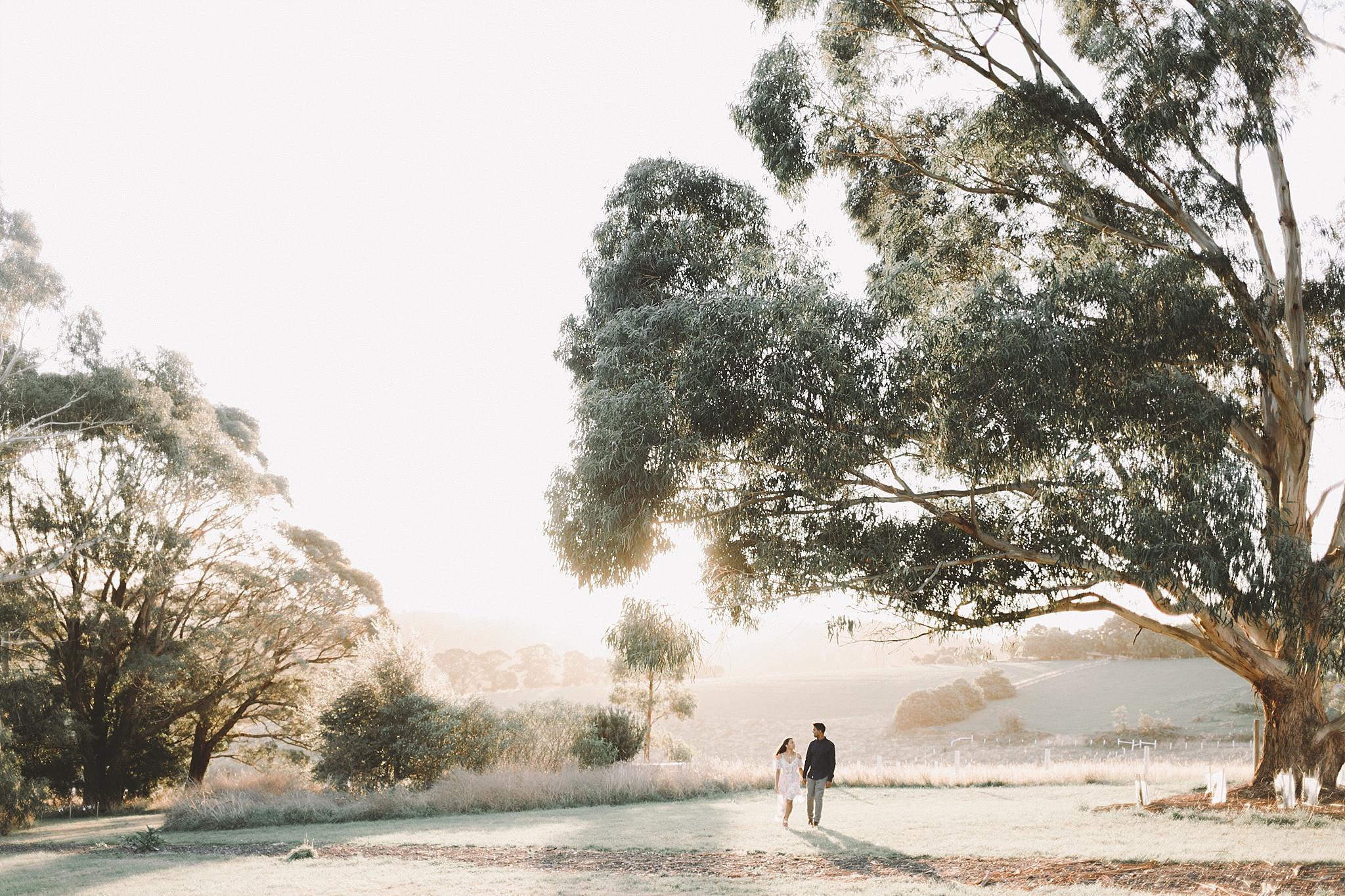 Dandenong Engagement Wedding Photographer-21.jpg