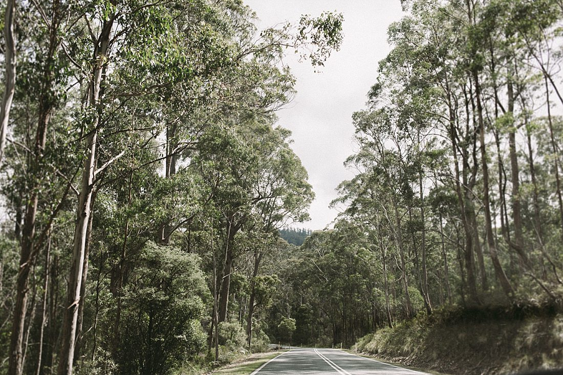 Tasmania Ten Years (114 of 462).jpg