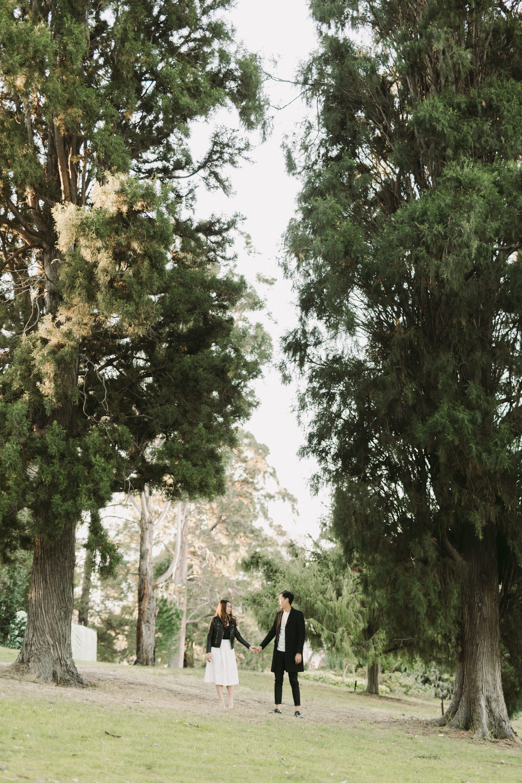 Melbourne Botanical Gardens Engagement Photographer (1 of 5).jpg