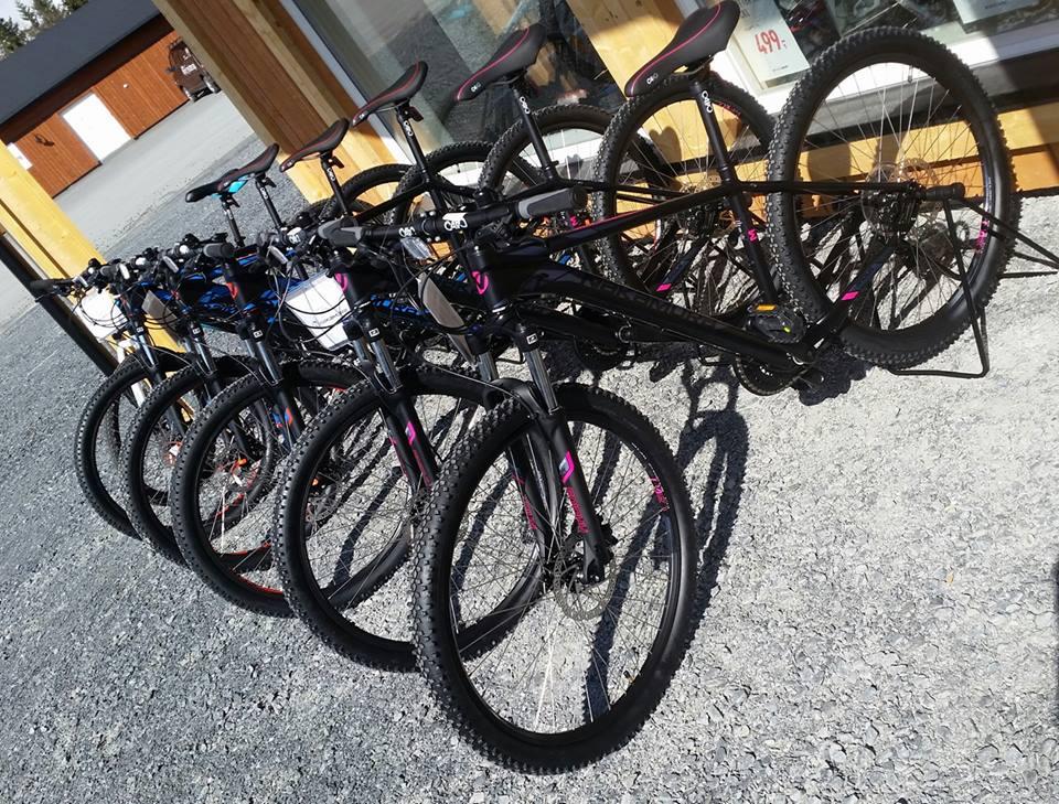 Sykkelutleie på Vaset - På InterSport Vaset kan du leie sykler til dame og herre + el-sykler. Skal du leie sykkel anbefaler vi at du tar turen til InterSport, der får du god hjelp til å finne sykkelen som passer for deg. Det er også utleie av sykkelhjelm.På Gomobu kan du leie barnesykkel og sykkeltralle.
