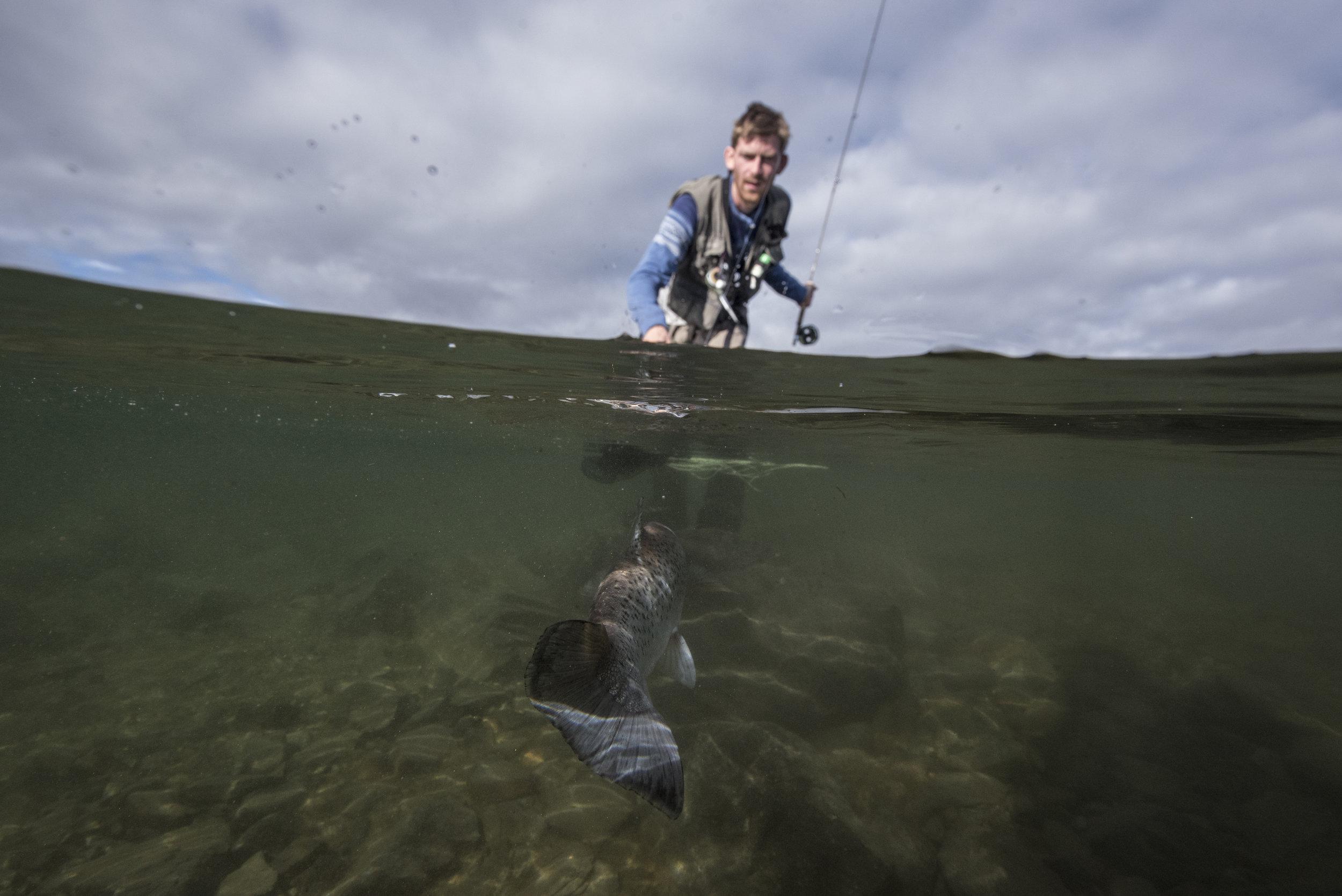 Rensenn - Rensenn er et meget langgrunt vann, spesielt fra nordsiden. Hele vannet er produktivt. Det er ingen opparbeidede stier rundt vannet, men det er greit å komme seg frem. Fra land er det gode fiskeplasser på sørlig og østlig side ved inn- og utløpsoser. Rensenn kan med fordel fiskes fra båt (uten motor). Mark og dupp er gode metoder her. Fluefiske er vanskekig uten bruk av vadere. Rensenn egner seg også godt for isfiske.Her får du: Ørret, Abbor