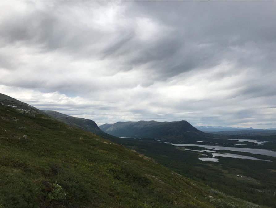 På vei til toppen av Gråkampen 1595 moh.
