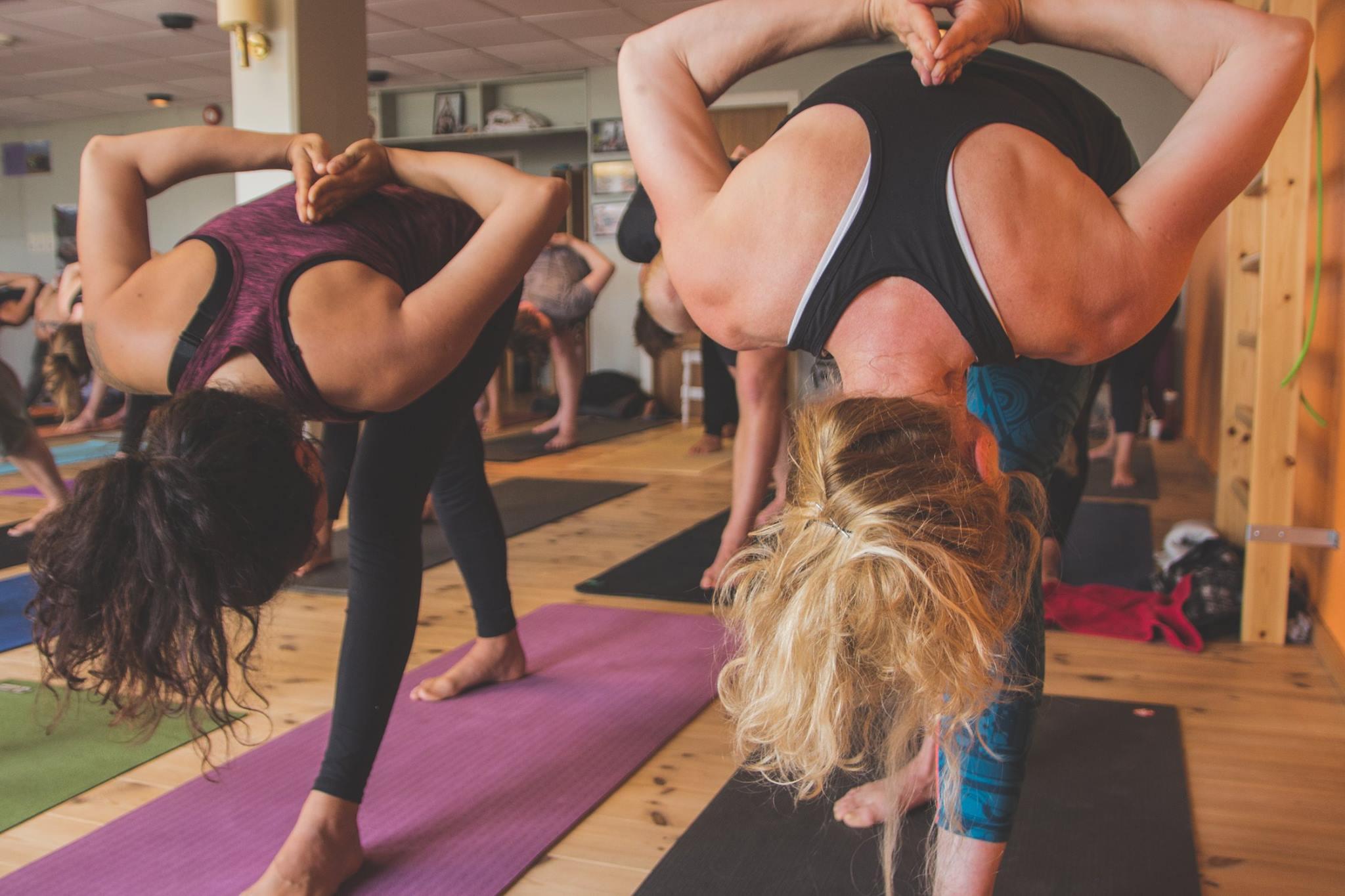 yogafornybegynnere
