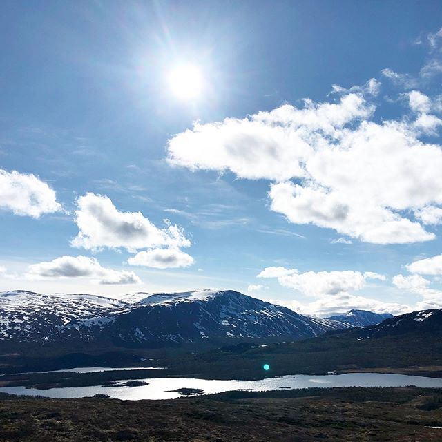 Snøen ligger fortsatt på toppen av Gråkampen💠💙 🏔 Bildet tatt på vei opp #grønsennknippa 31.05.19 - #gomobu #gomobufjellstue #visitvaldres #visitnorway #visitvaset #vaset #valdres #norway #liveterbestute #kvikklunsj