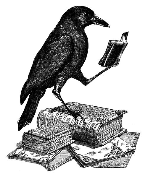 El cuervo es de  The Odd Emporium (Etsy)