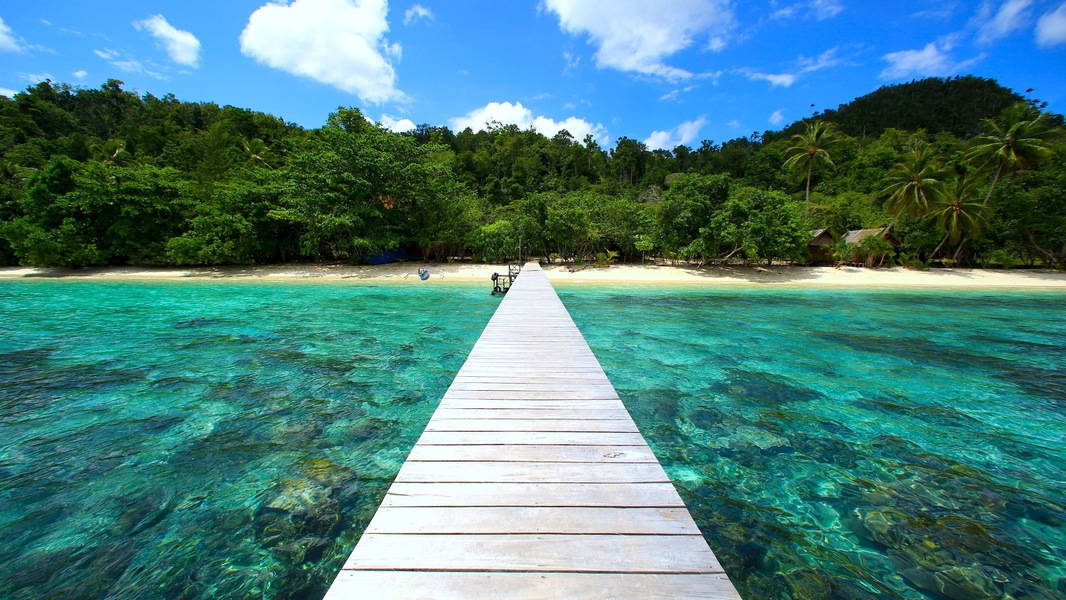 Raja-Ampat-Papua-Indonesia.jpg