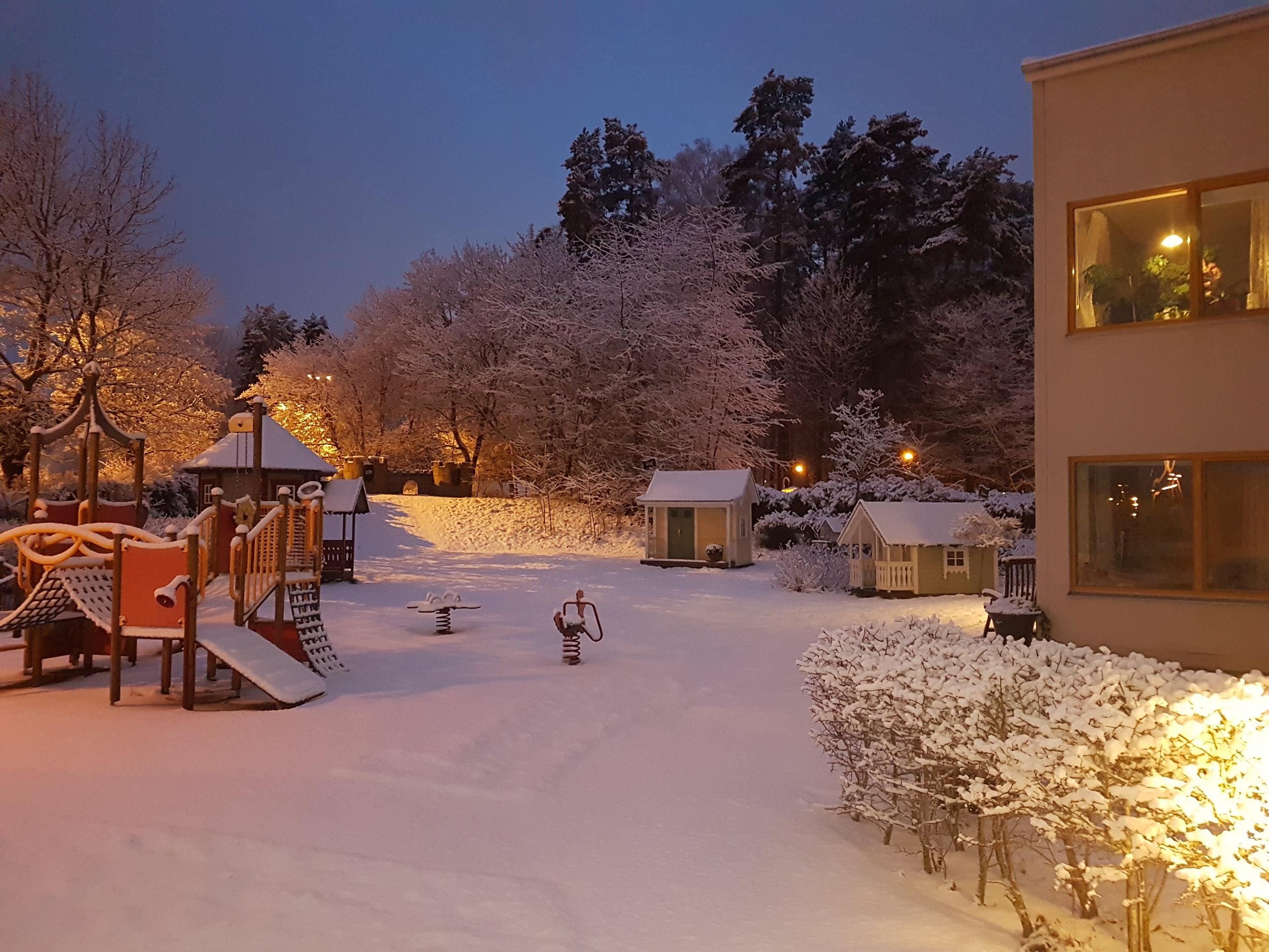 Vinterlandskap trädgård.jpg
