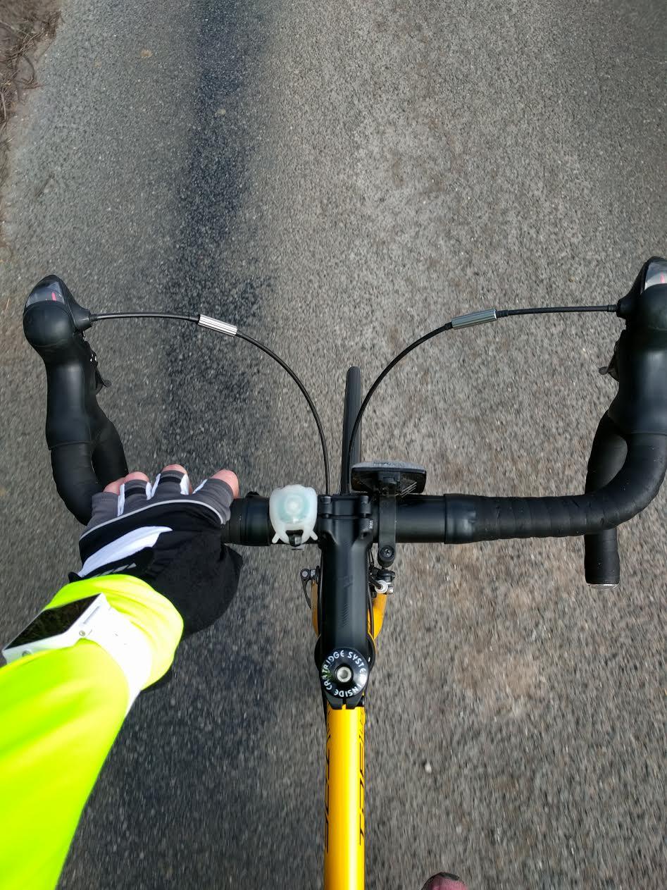 ride for toni handlbars
