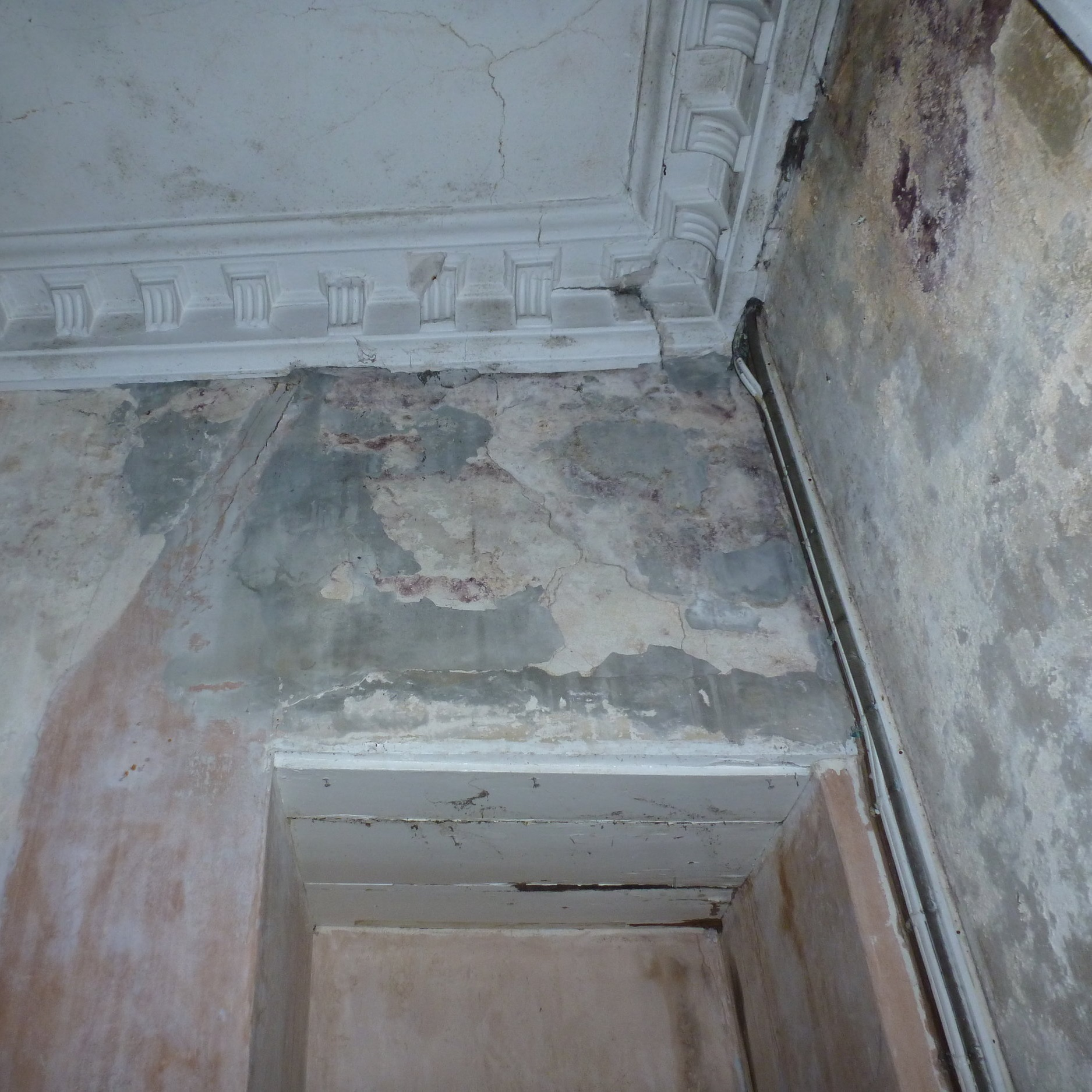 Damp - failure of wall, ceiling and cornice