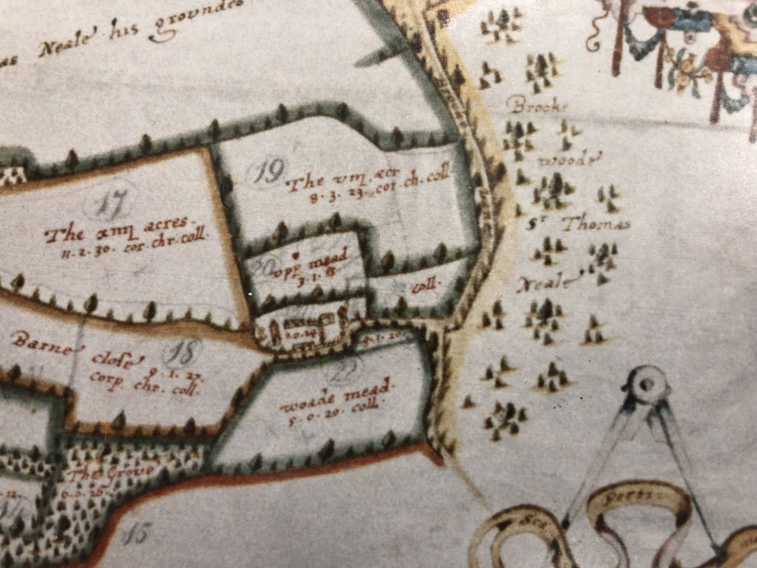 The Langdon Map of Bere Farm 1615
