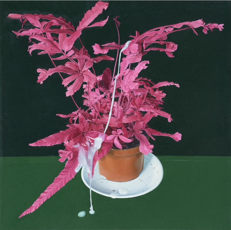 Tristan Pigott - 'Misfired Shot at Nature Morte'