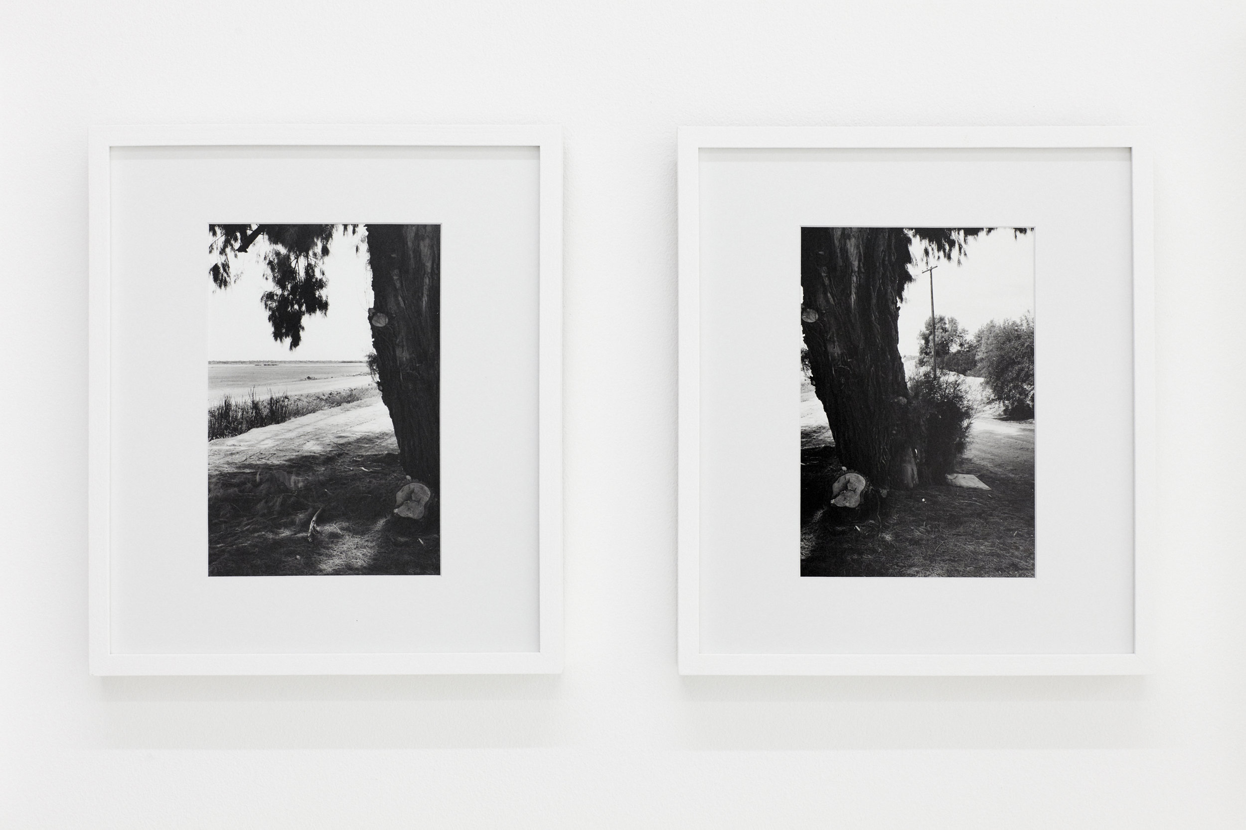 '62, California', (2017)   Silver gelatin   prints. Framed diptych    8x10 in, silver gelatin prints.     Edition of 3