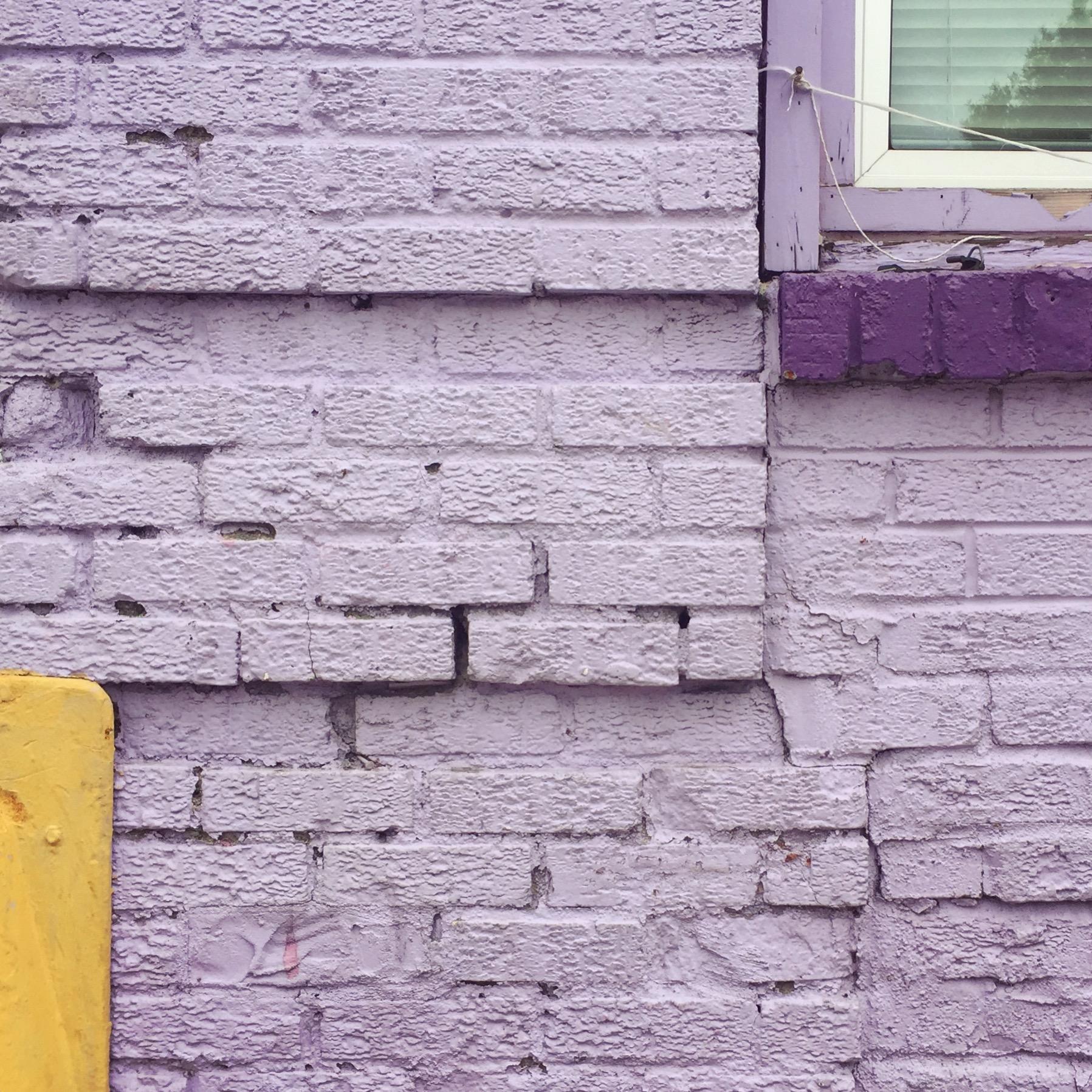 purple yellow.JPG